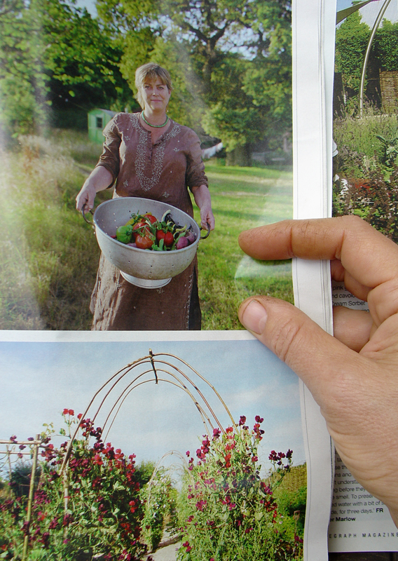 Photograph of a photograph of Sarah Raven and her funky archway that curiously resembles mine by Tara Darby © Telegraph Magazine