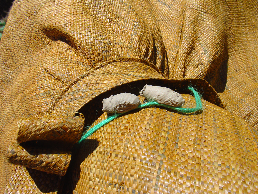 Wasp larvae housing occupying my garden hat