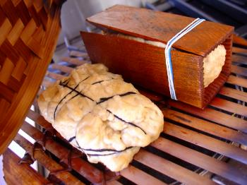 Seitan instructable: how to make seitan or lab meat at home, Debra Solomon, culiblog.org