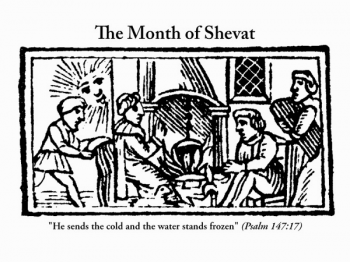 The month of Shvat, from the 1722 Amsterdam edition of the Book of Customs, now adapted by Scott-Martin Kosofsky, Debra Solomon, culiblog.org