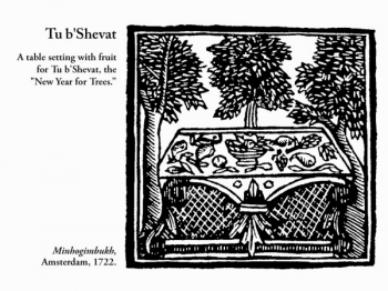Tu B'Shvat, from the 1722 Amsterdam edition of the Book of Customs, Debra Solomon, culiblog.org